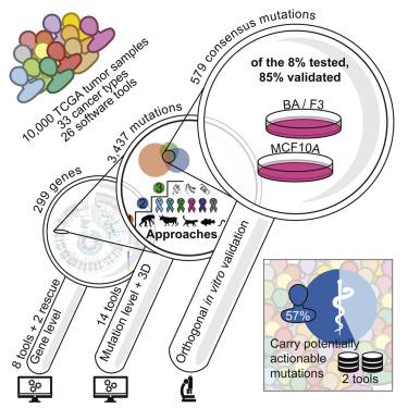 cancer genetic marker test