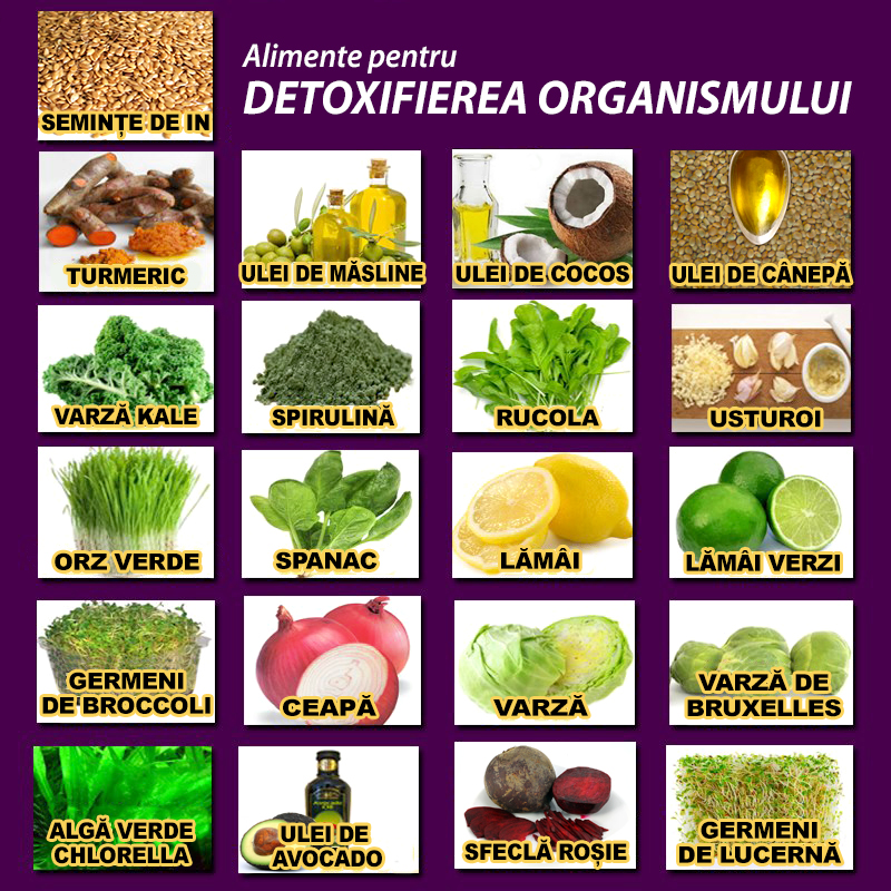 detoxifiant pt organism