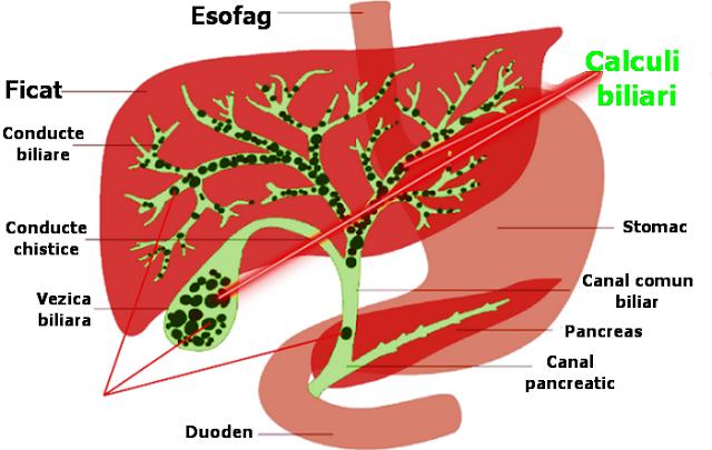 detoxifiere pentru pancreas