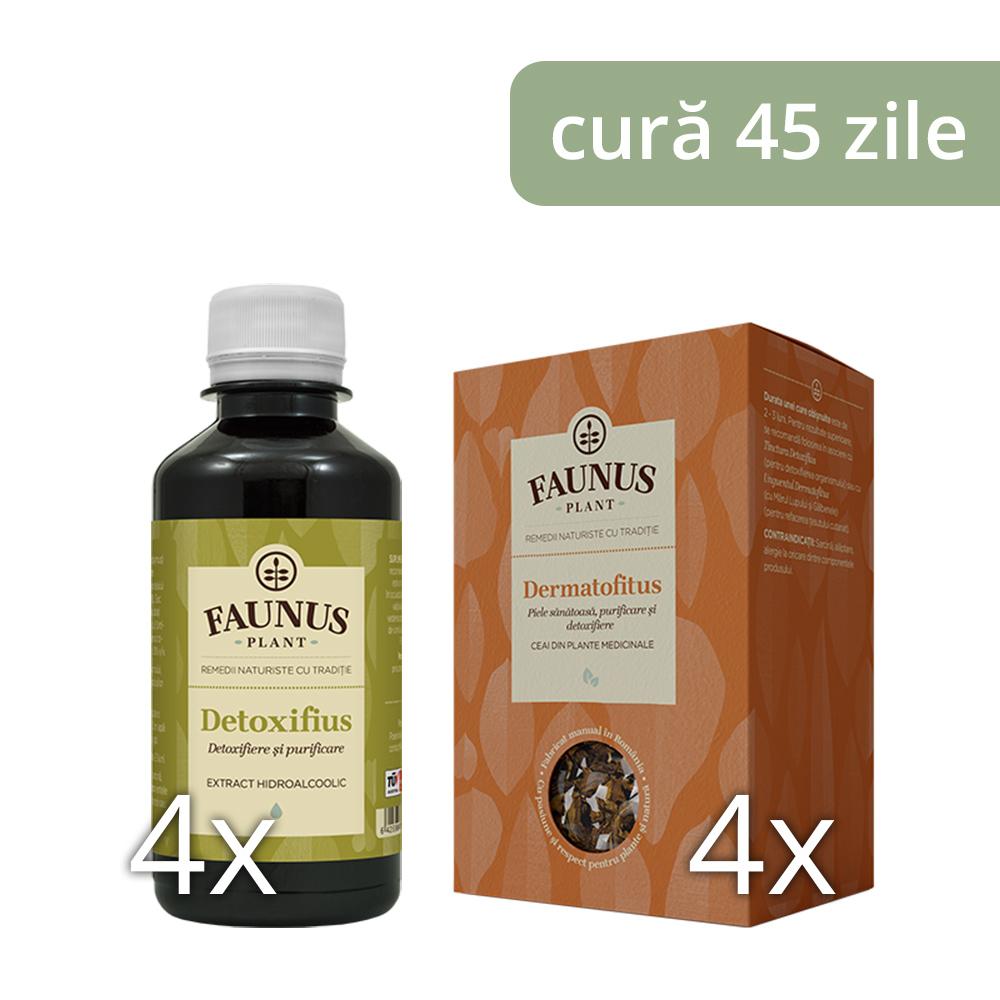 detoxifiere pentru piele)