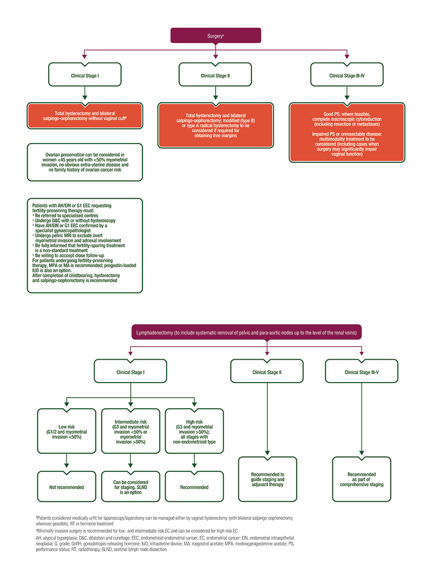 gastric cancer guidelines esmo