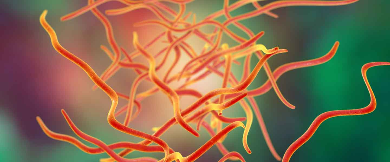 virus del papiloma humano genoma cheloo cronica unei