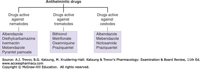 Ascaris in Giardia tablete