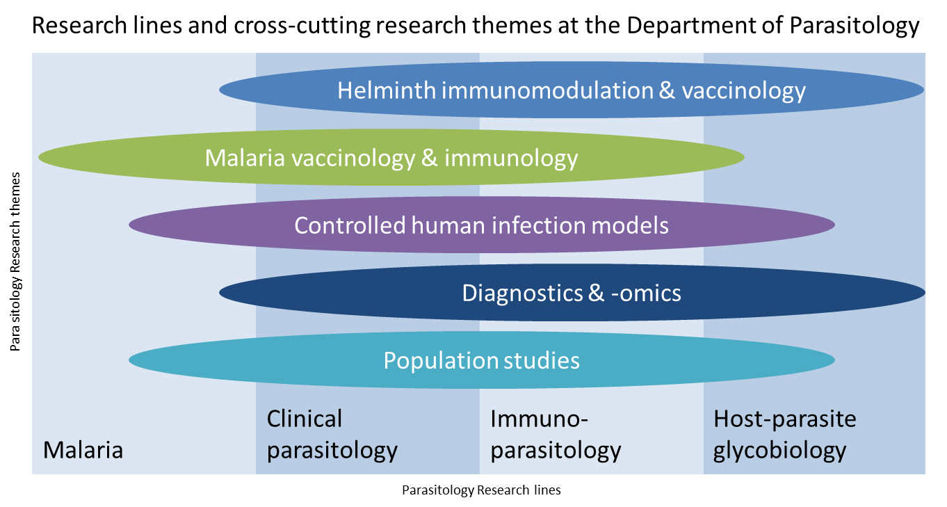 helminth diseases research