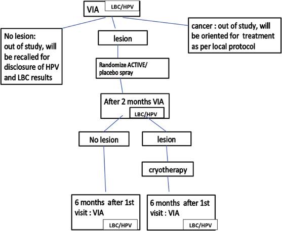 Isoprinosina: antiviral, imunomodulator si neuroprotector