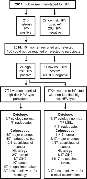 hpv high risk genotypes positive)