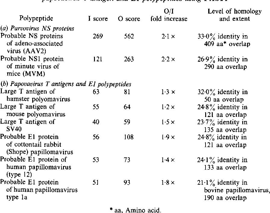 human papillomavirus b19)