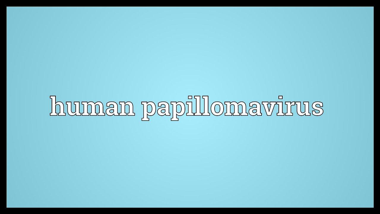PROCTOLOGY - Definiția și sinonimele proctology în dicționarul Engleză