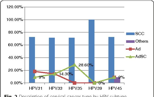 papilloma virus hpv 33)