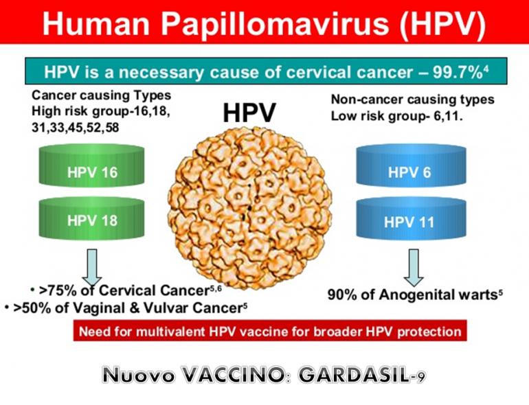 papilloma virus vaccino prezzo