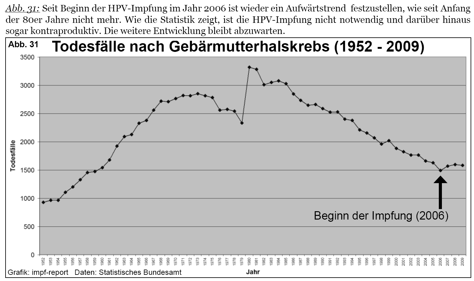 papillomavirus impfung risiken