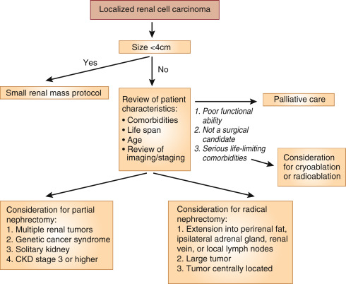 renal cancer and treatment