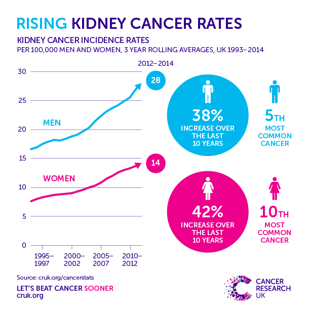 renal cancer facts)