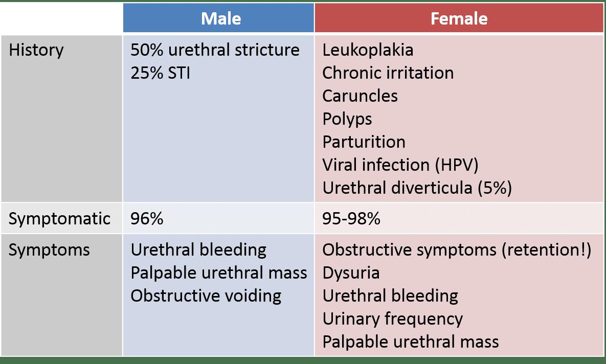 urethral papilloma carcinoma)
