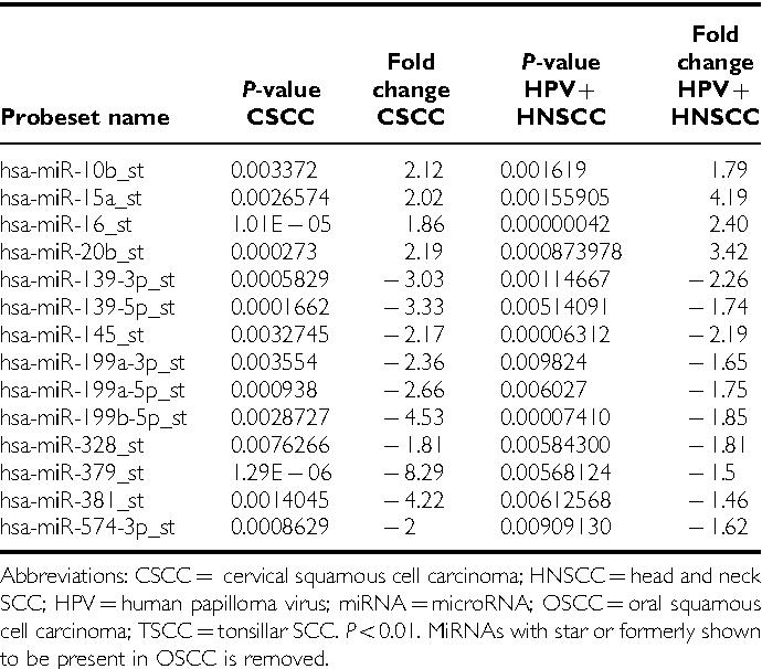 virus hpv e cancer)