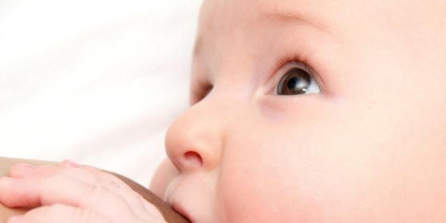 papilloma virus e allattamento