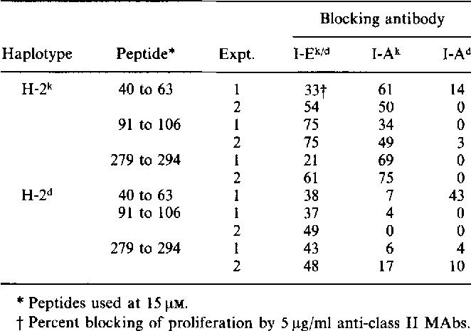 human papillomavirus definition