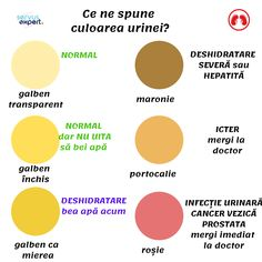 oxiuri in vezica urinara neuroendocrine cancer md anderson
