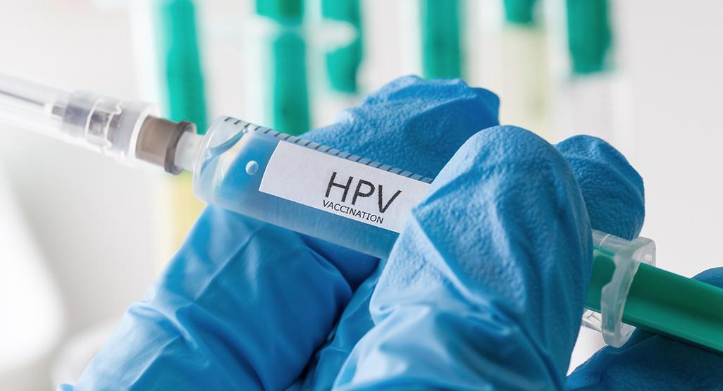 human papillomavirus after pregnancy