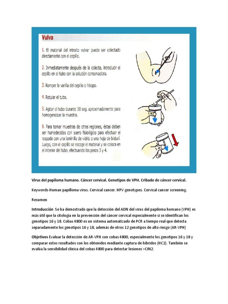 virus del papiloma raspado)