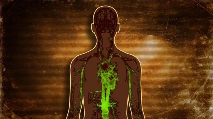 Cum îți dai seamă că ai în corp prea multe toxine