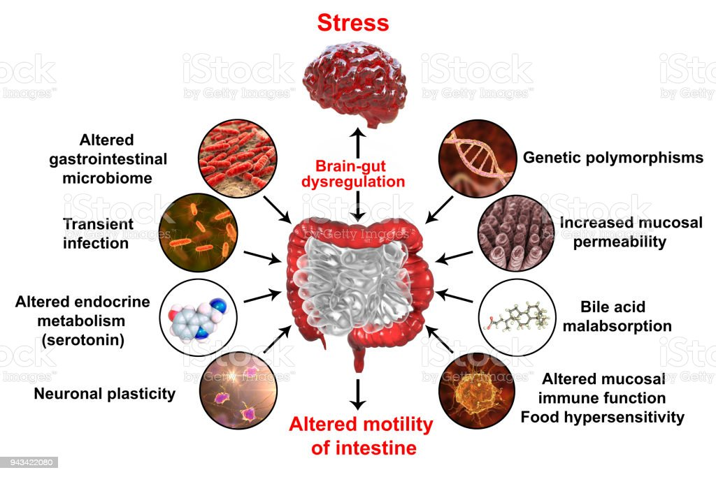 cancer intestinal fisiopatologia)