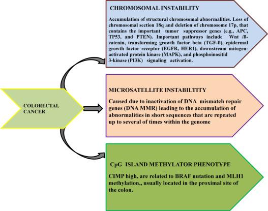 intestinal cancer biomarker
