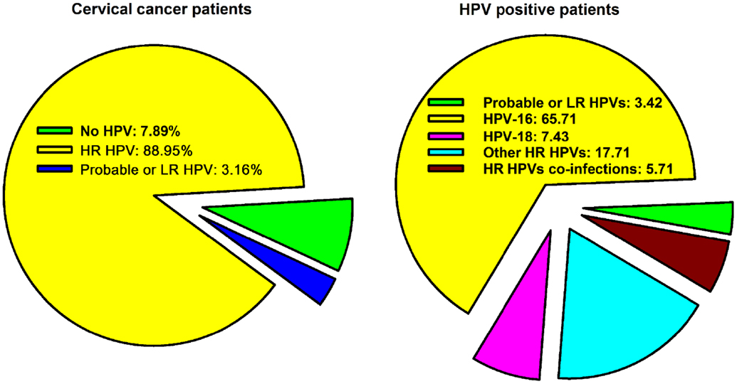 cervical cancer from hpv 16)