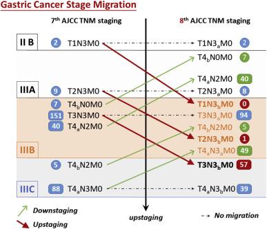 gastric cancer ajcc)