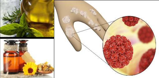 human papillomavirus infection natural treatment