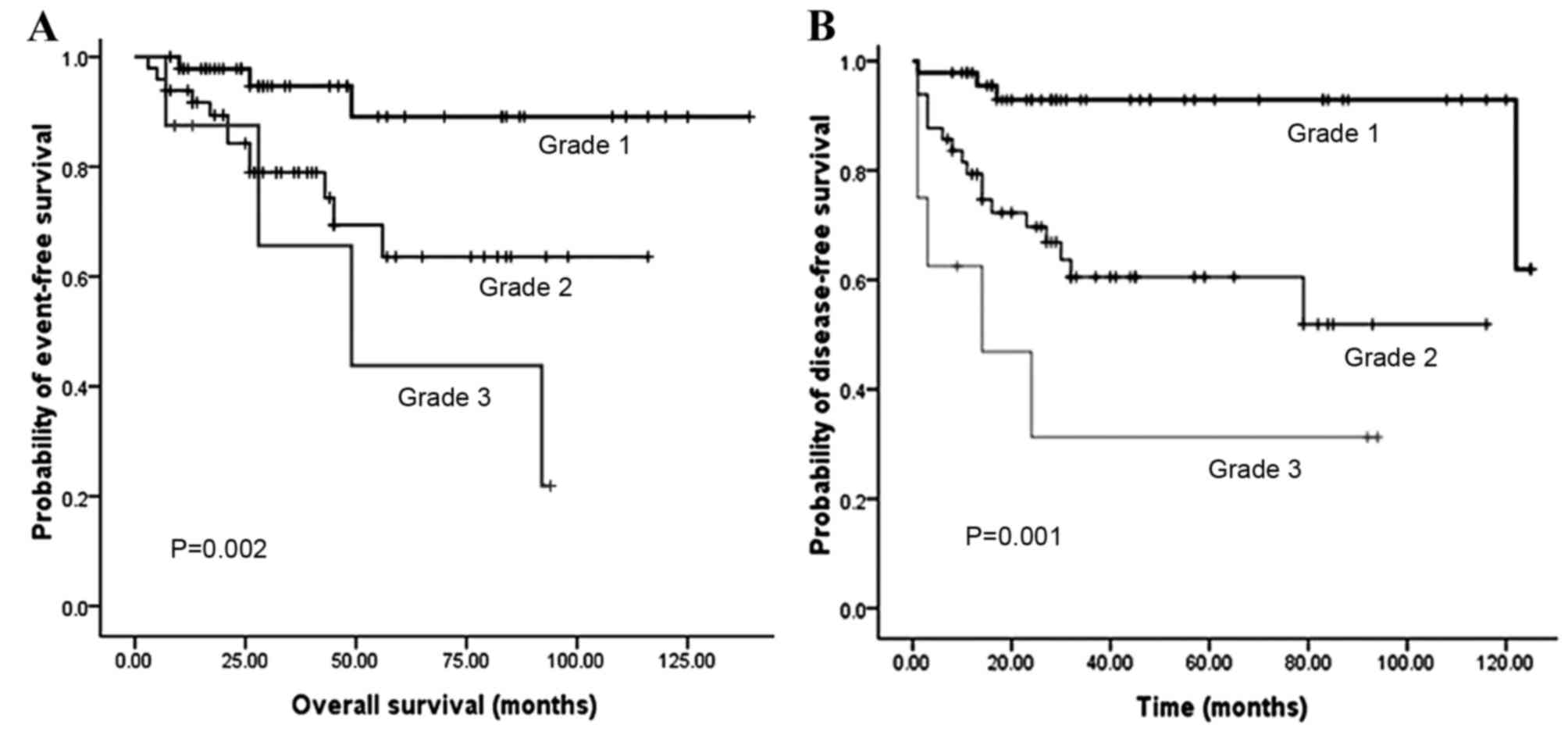 neuroendocrine cancer cure rate