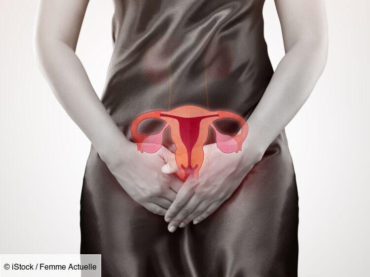 traitement papillomavirus ovule)