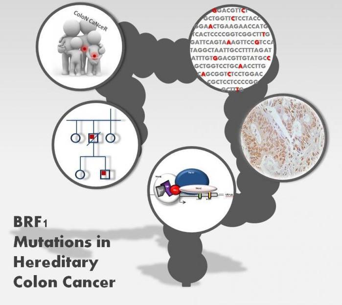 cancer de colon es hereditario