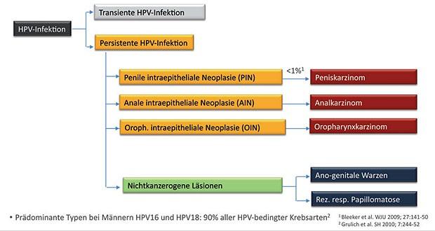 hpv impfung trotz infektion