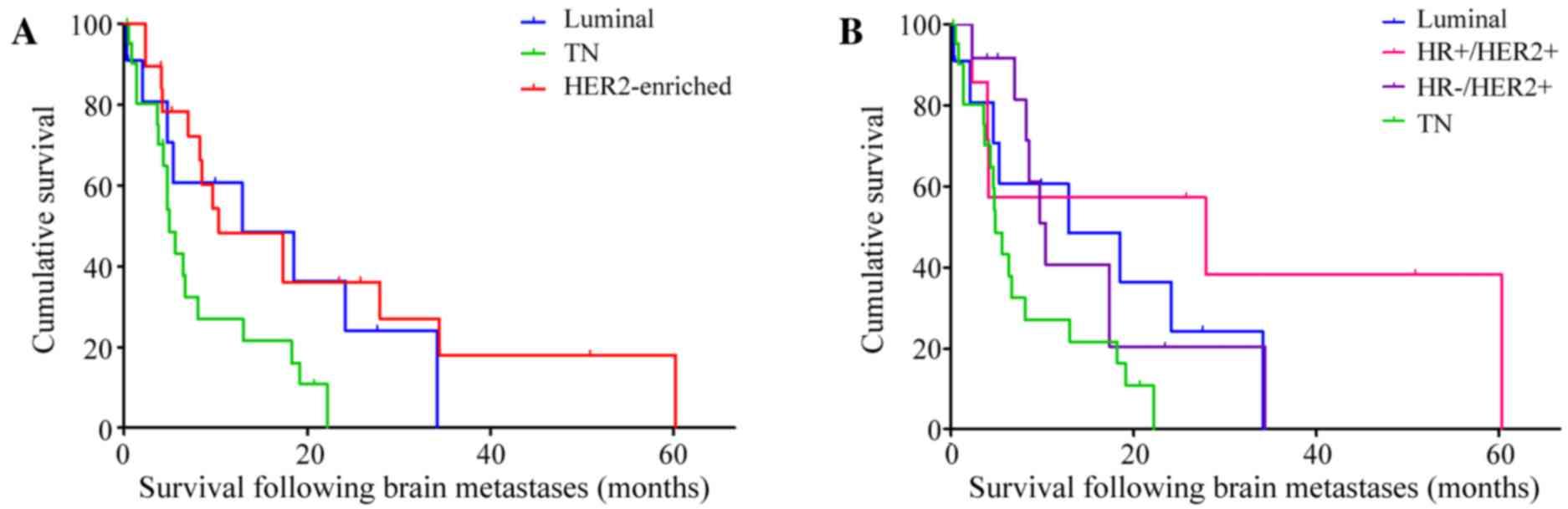 cancer metastatic to brain prognosis)
