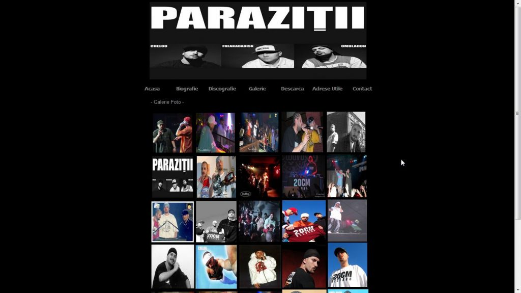 discografie parazitii)