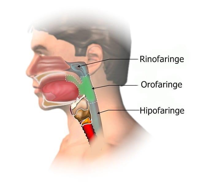 cancerul orofaringian simptome)