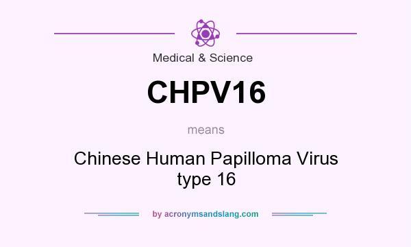 human papilloma virus definition