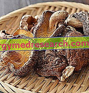 colorectal cancer organoids