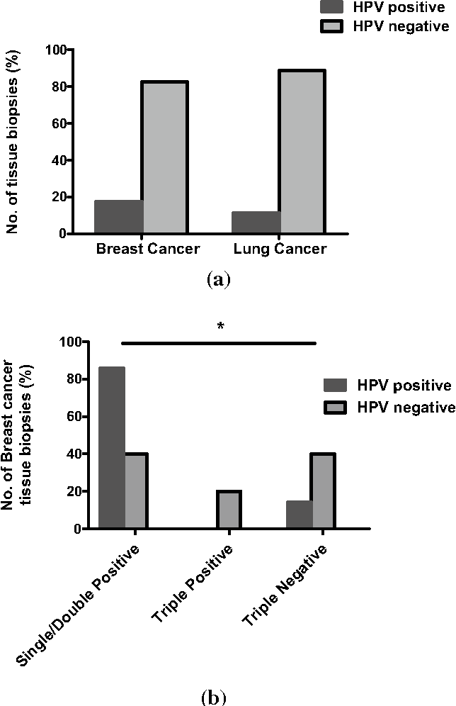 hpv 16 breast cancer