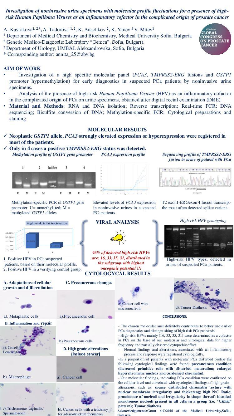 hpv high-risk male urine molecular testing labs