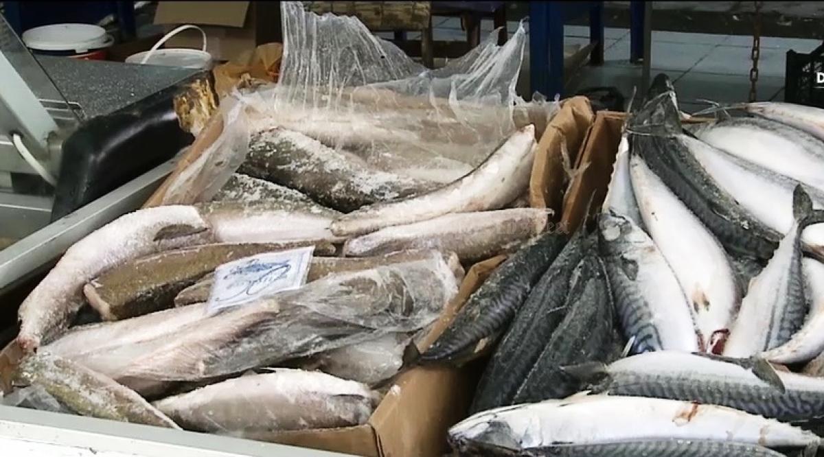 Paraziţi din carnea de peşte - F&H – Fishing & Hunting