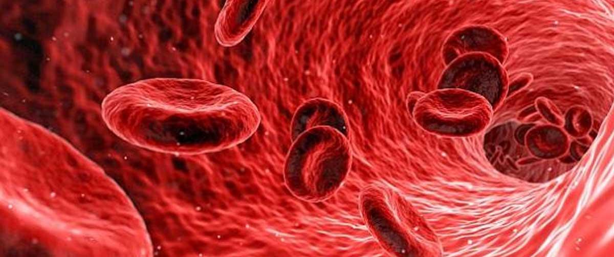 esophageal papilloma icd 10 helmintox 250 mg cena