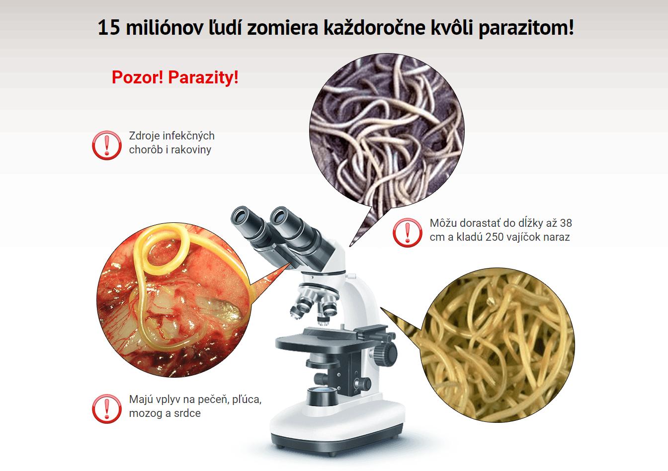 parazity v ludskom tele diagnostika hpv eye treatment