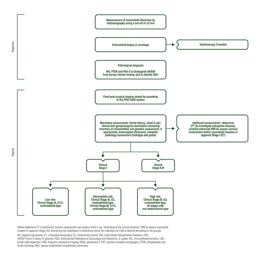 endometrial cancer brachytherapy guidelines