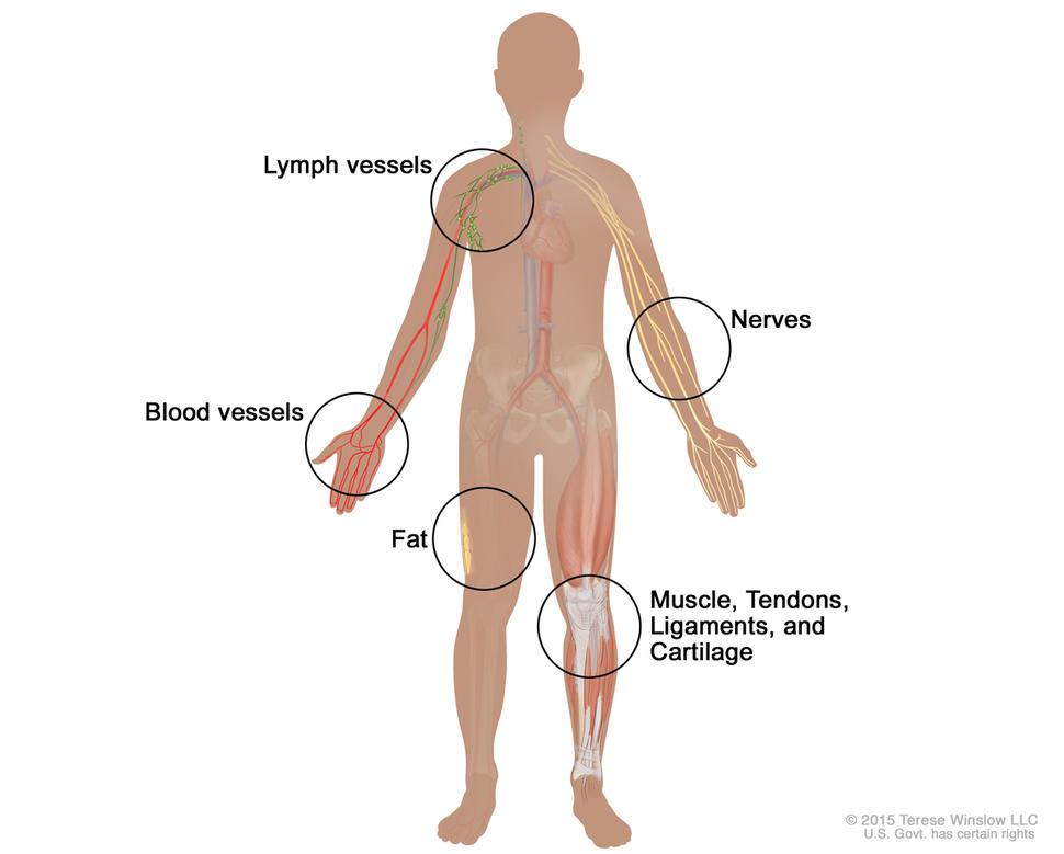 Chirurgia glandei tiroide.pdf