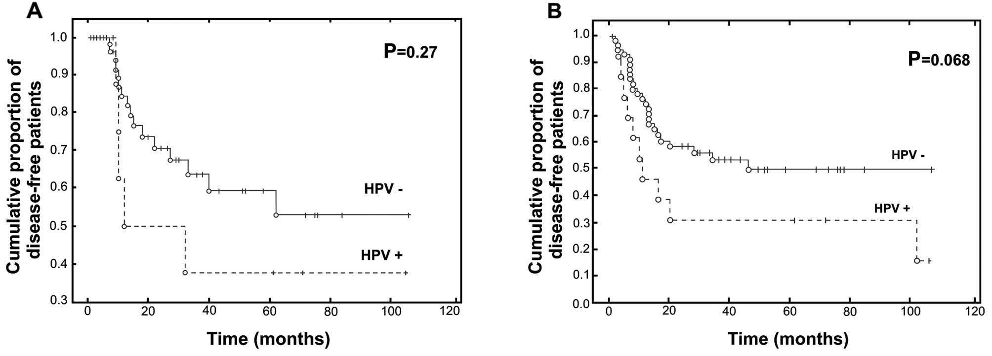 hpv cancer prognosis bladder cancer genetic heterogeneity