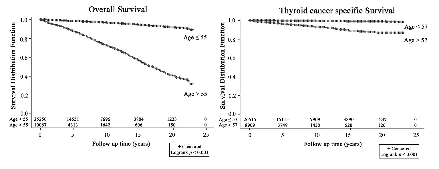papillary thyroid cancer cure rate)