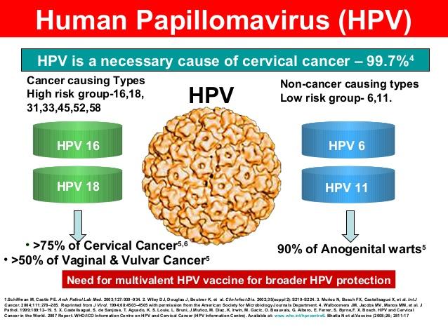 human papillomavirus test meaning