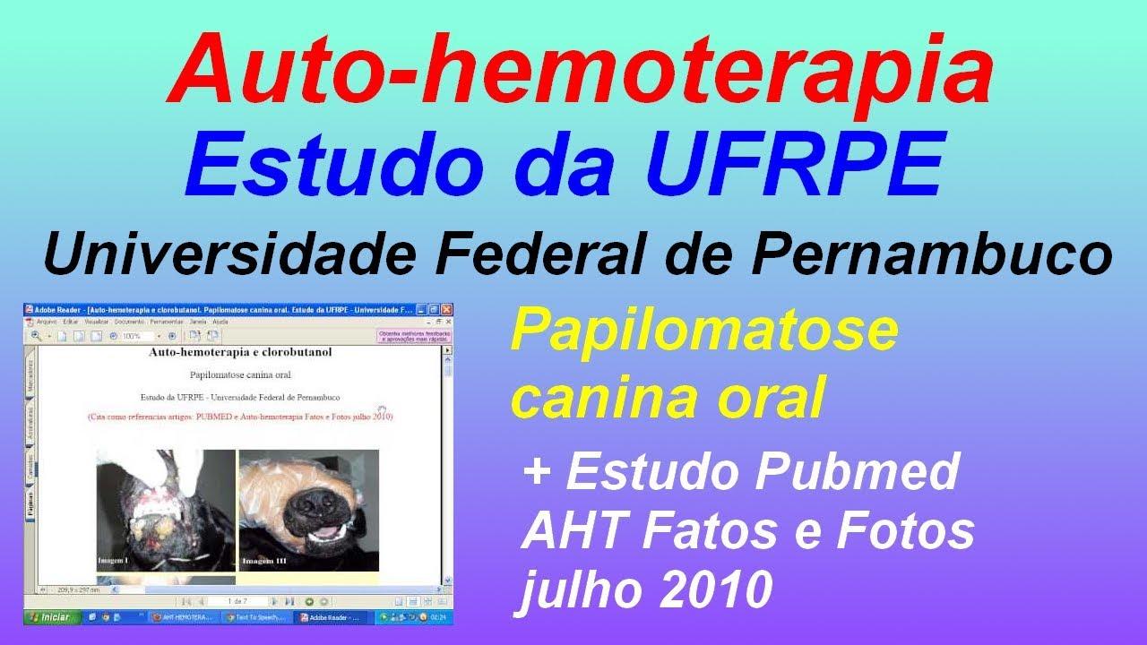 hemoterapia papilomatosis bovina